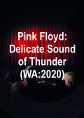 Pink Floyd: Delicate Sound of Thunder (WA:2020)